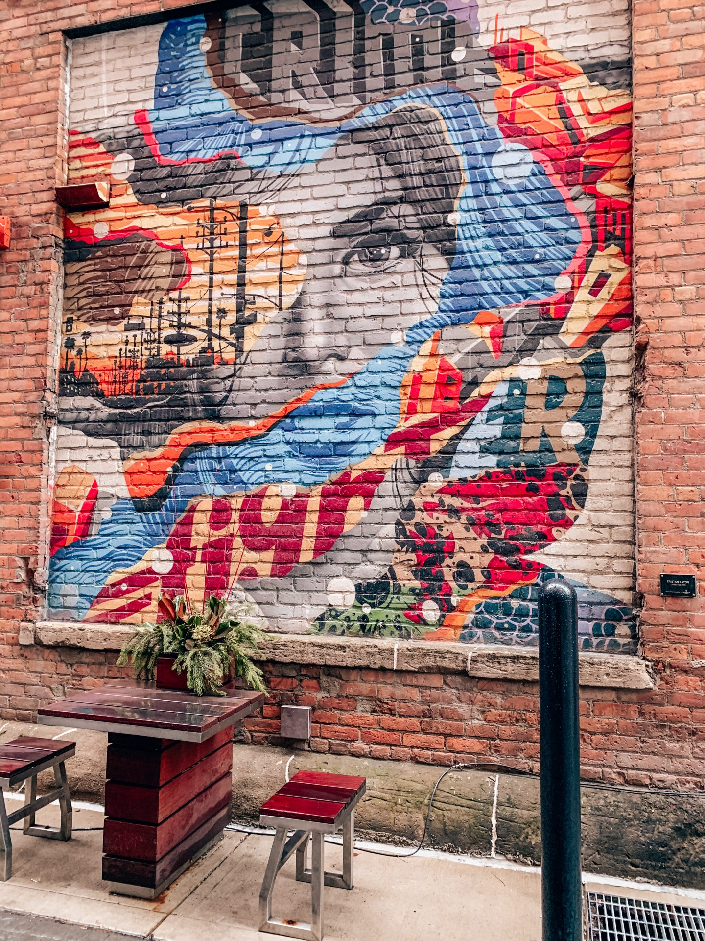 angel wings and murals in metro detroit