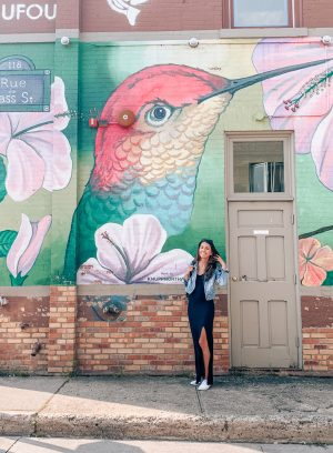 traverse city hummingbird mural